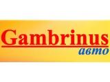 "Логотип ""Gambrinus-авто"", ИП"