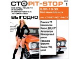 Логотип Сто Pit-Stop в сахе И.П. Малафеев Д.С.